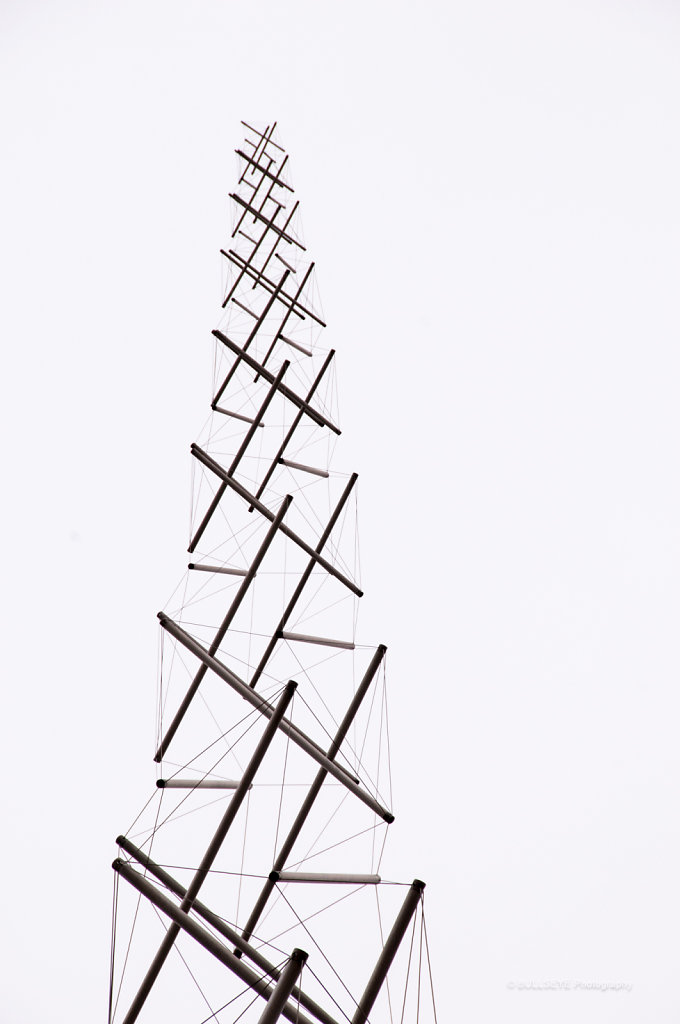 COLLAPSED QUANTUM LADDER